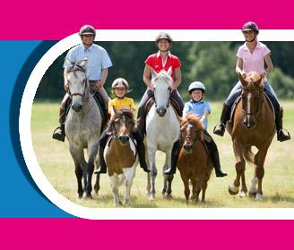 Journée du cheval 2013