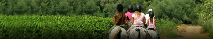 bandeaux-bouger-equitation_x
